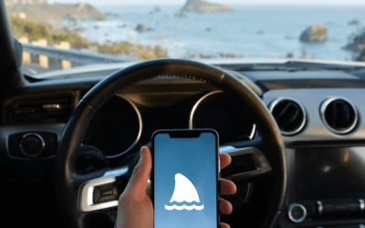Maritime API in Mobile Apps Examples